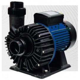 Pompe Bi-vitesse VIPool